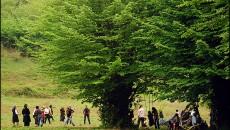 """سيزده بدر مازندران روز ترويج فرهنگ """" انس با طبيعت"""""""